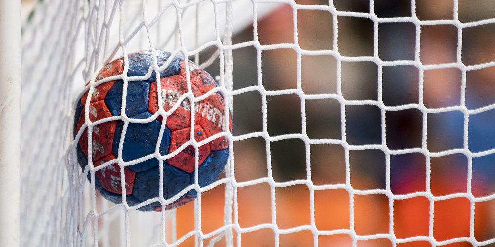Blåröd handboll i nät